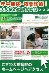 年中無休・夜間診療!大人気の動物病院は名古屋 動物病院「こざわ犬猫病院」
